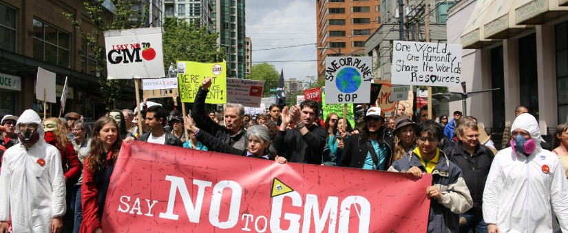 Grappling With GMOs