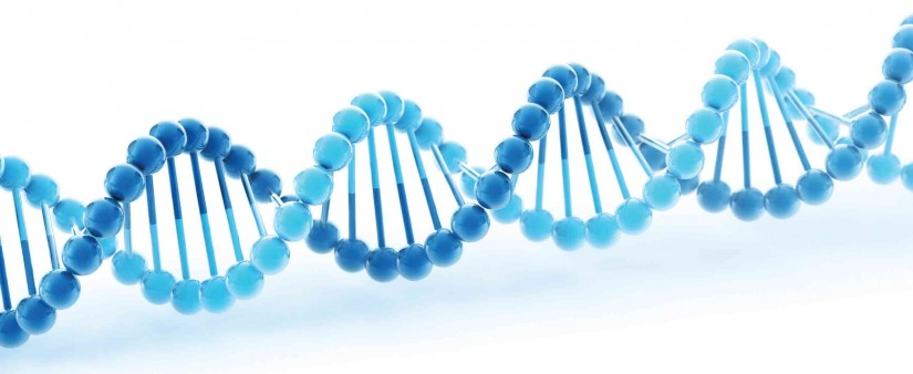 Genetic Testing Can Reveal Your Family's Chances of Developing Celiac Disease