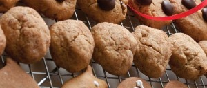 Soft Spiced Cookies