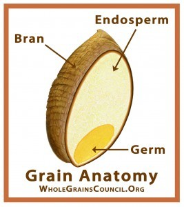 Figure 1 Whole Grain 1