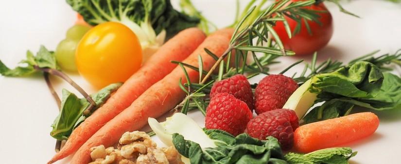A Paleo Diet Primer