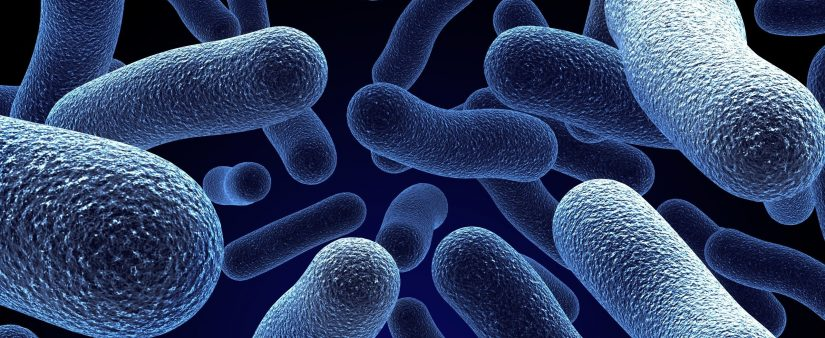 Are Bacteria to Blame?