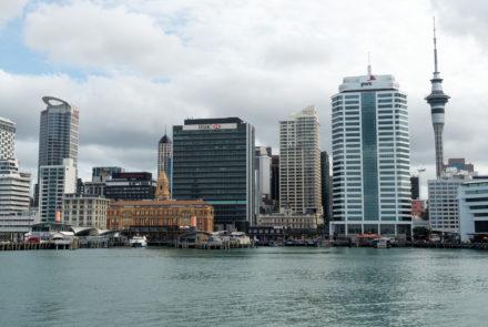 Flockin' to Auckland Gluten Free