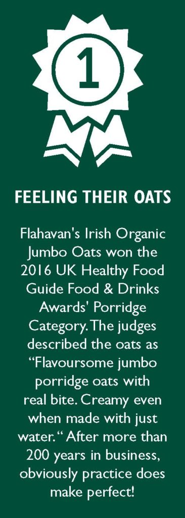 You can make WHAT with Irish oats?! - Gluten-Free Living