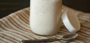 DIY Dairy-Free Yogurt