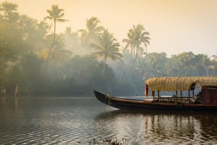 Your Gluten-Free Guide to South India