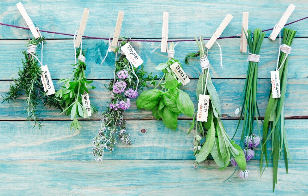 6 Herbs to Use in Your Gluten-Free Food This Summer